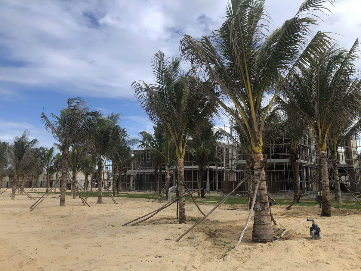 tien do du an shantira beach resort and spa 31/07/2020